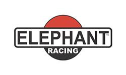 elephant-racing
